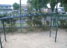 IMG_3822