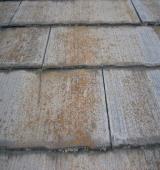 屋根の退色、はがれ、カビや藻の発生