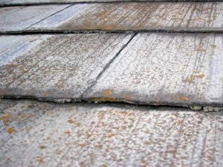スレート瓦(コロニアル、カラーベスト)は藻やカビが多く発生します